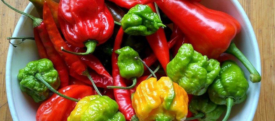 Papryczki habanero i red scorpion - najostrzejsze papryczki chili na świecie