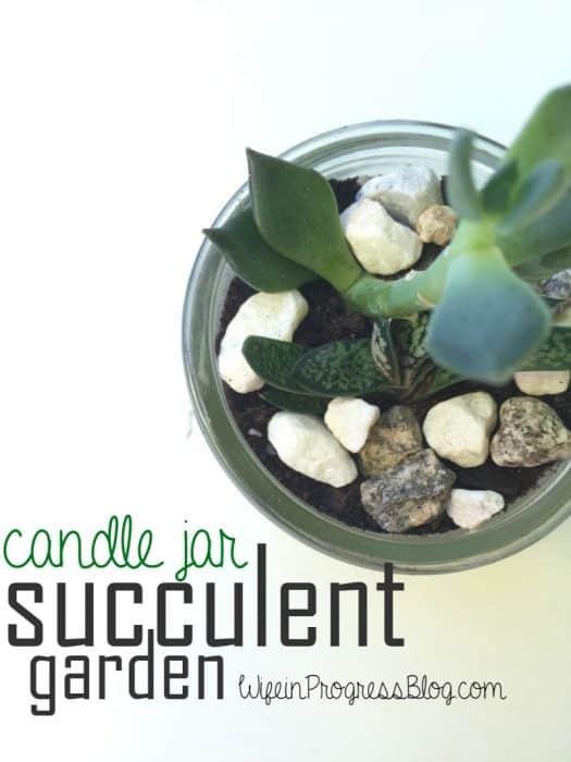 Candle Jar Succulent Garden