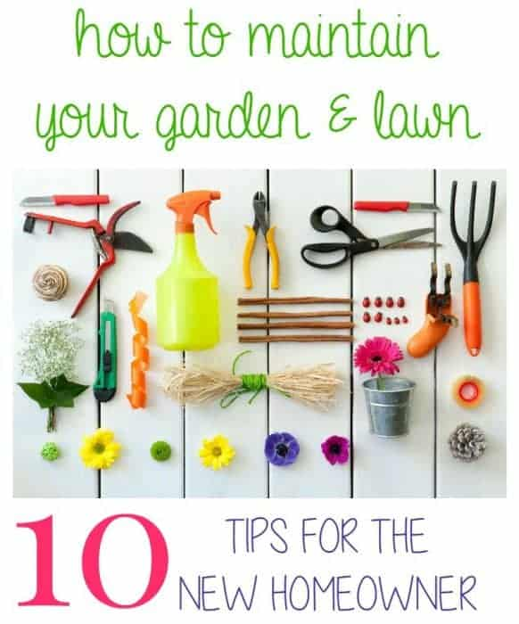 10 Garden and Lawn Tips for the New Homeowner