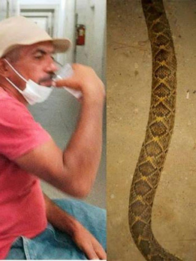 Homem morre após ser picado na boca por cascavel em Mossoró