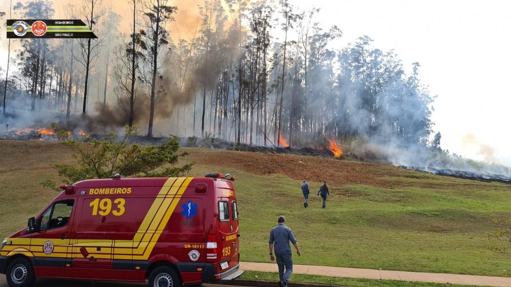 Sete pessoas morrem após queda de avião em Piracicaba, no estado de São Paulo