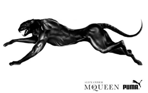 Alexander McQueen x Puma collaboration to expand with ...
