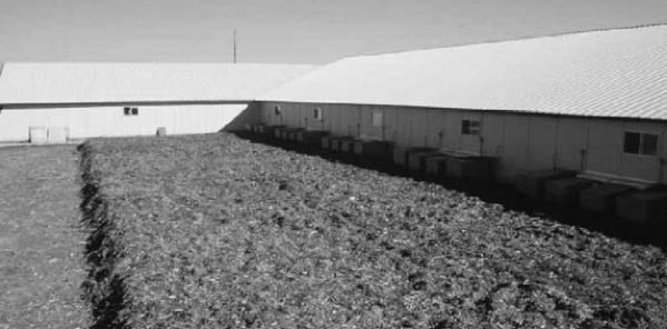 Biofilters for Odor Control at Swine Facilities - Pork Information