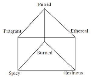 Figure 2. Henning's odor prism. [2]
