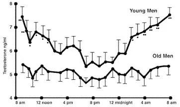testosterona ritmo circadiano