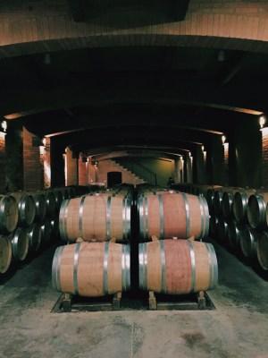 vinícolas chile santa cruz