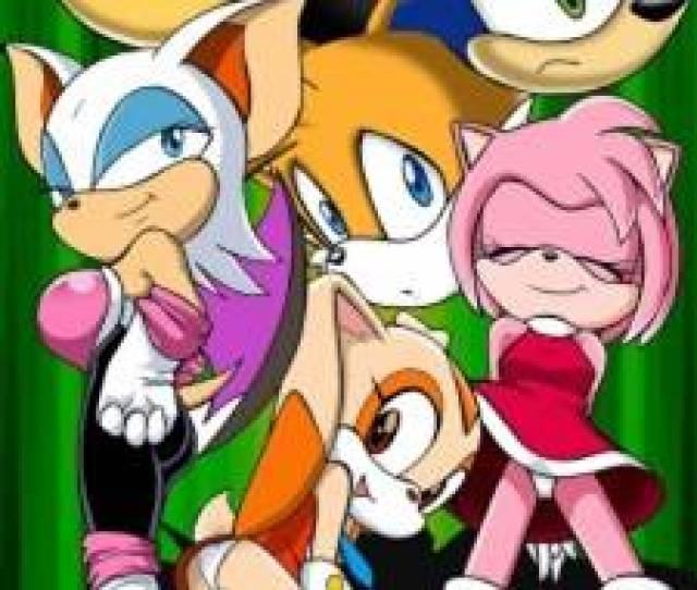 Palcomix Sonic Xxx Project Sonic Hedgehog