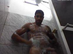 Gato brasileiro tomando banho.