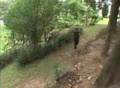 Brasileiros do exército transando no mato.