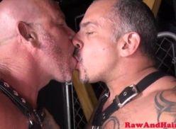Coroas gays fazendo sexo flex