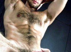 Fotos de machos pelados mostrando a rola