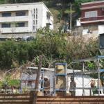 Z Solo a été dépossédé de tous ses biens par RANARISON Tsilavo 12 - La Cour d'appel d'Antananarivo viole l'article 2 de la loi sur la concurrence ainsi que l'article 6 du code de de la procédure Pénale et l'article 181 de la loi sur les sociétés commerciales pour faire condamner Solo à 2 ans de prison avec sursis et 428.492 euros d'intérêts civils