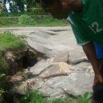 Ungkap Fenomena Tanah Merayap di Nusalaut, BNPB Minta Badan Geologi Lakukan Kajian Teknis