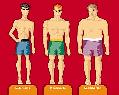 metabolismo-ectoformo