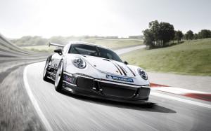 2013-porsche-911-gt3-cup-porsche-motorsport-13