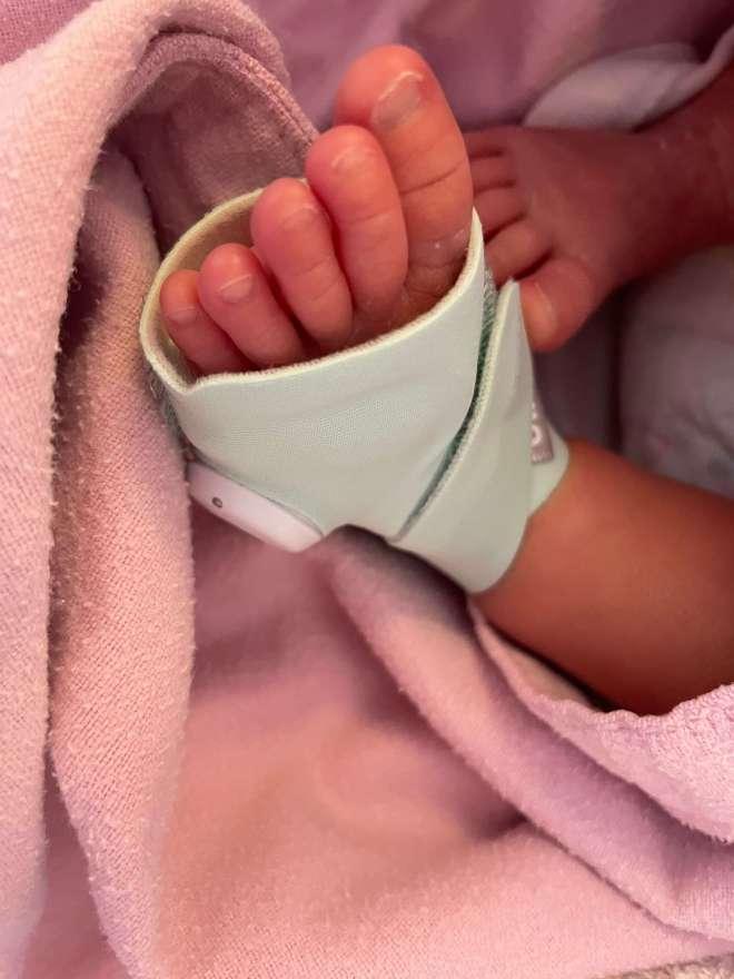 Owlet 智慧襪穿戴在寶寶腿上的樣子