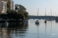 Rushcutters Bay early morning July 25
