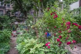 20110604 Dias Y Flores Garden 12