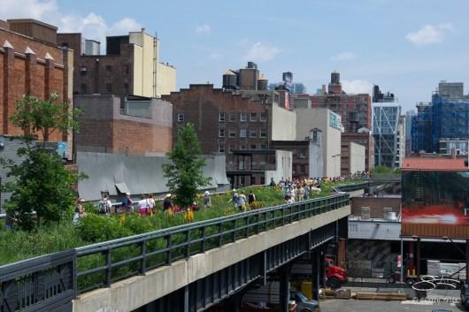 20110618 High Line 067.NEF