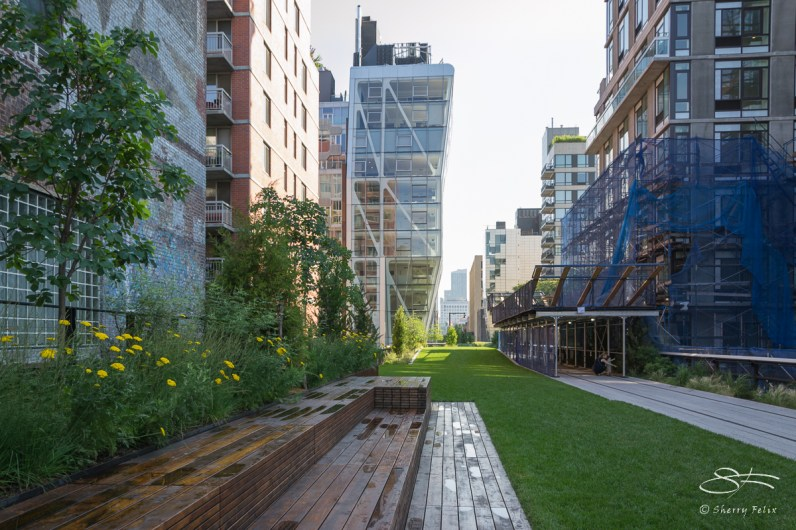 2011-07-09 High Line 44