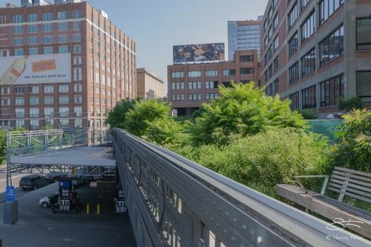 2011-07-09 High Line 68