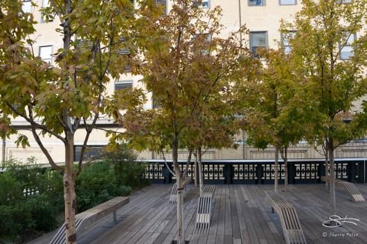 2011-11-03 High Line 33