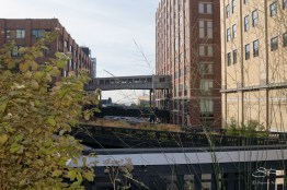 2011-11-03 High Line 34