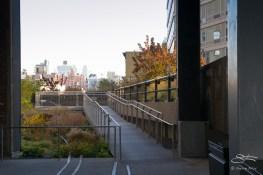 2011-11-11 High Line 16