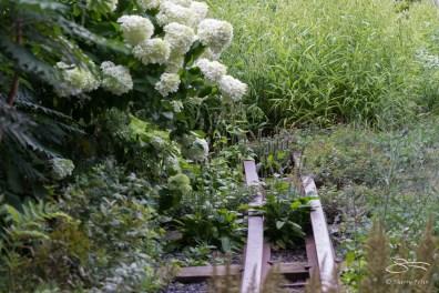 2013-07-28 High Line 25