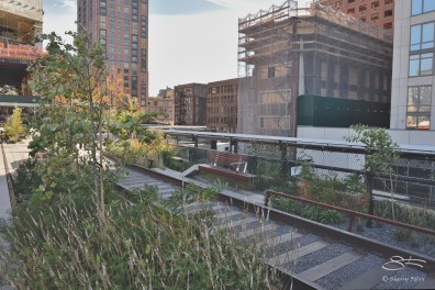 2014-11-02 High Line extension 7