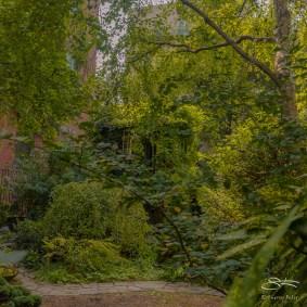 20151008 Earth People Community Garden 38