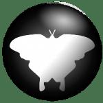 Qmmp_icon256