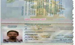 Cara Buat Passport Khusus Mahasiswa Sesuai Pengalamanku