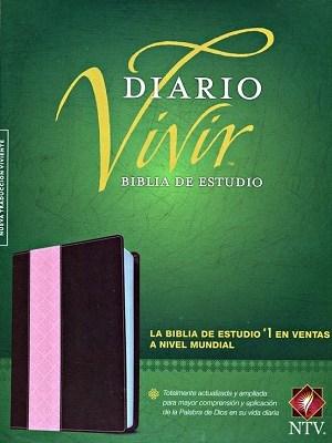 DIARIO VIVIR ROSA PIEL