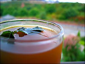 elma ve nane çayı :: jane clarke :: bbc