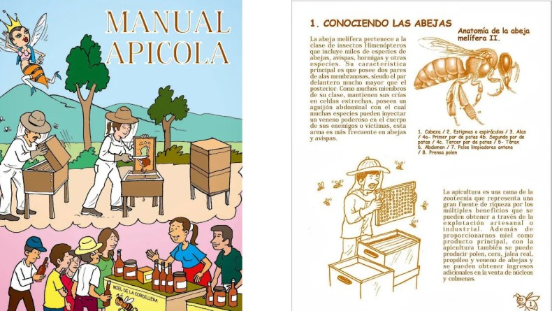 , MANUAL DE APICULTURA PARA NIÑOS Y NIÑAS