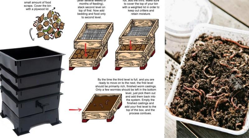 , Guía práctica del vermicompostaje: Cómo hacer vermicomposteras y humus de lombriz