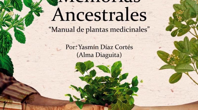 Manual diaguita de plantas medicinales PDF