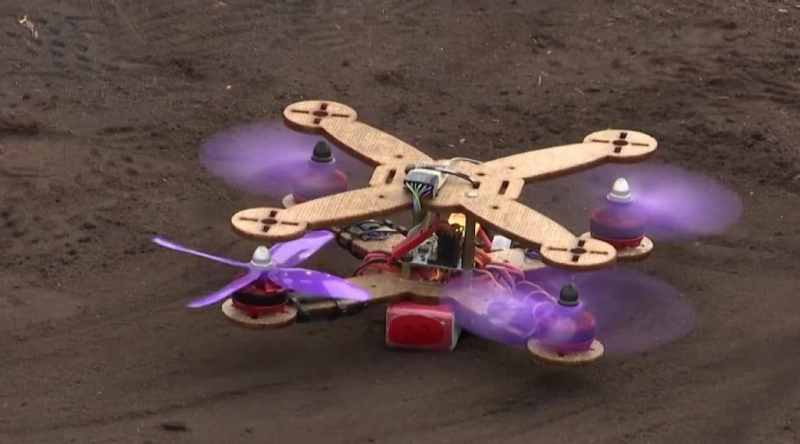 , En Malasia fabrican drones ecológicos con desechos de ananá