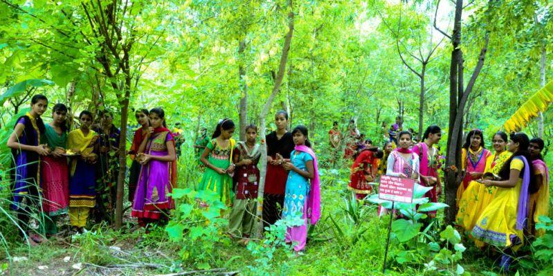 En India plantan 111 árboles cada vez que nace una niña – Buena Vibra