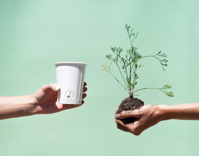 , Jóven inventó una taza descartable que al desecharla se convierte en un árbol