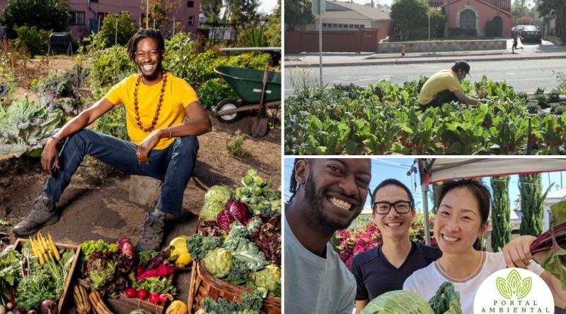 , Joven transformó un desierto de alimentos en una ciudad abundante y organizada