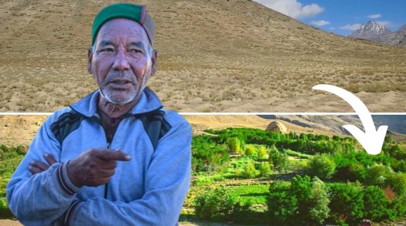 , Este hombre ha dedicado su vida a transformar un desierto frio en un bosque de 30.000 árboles