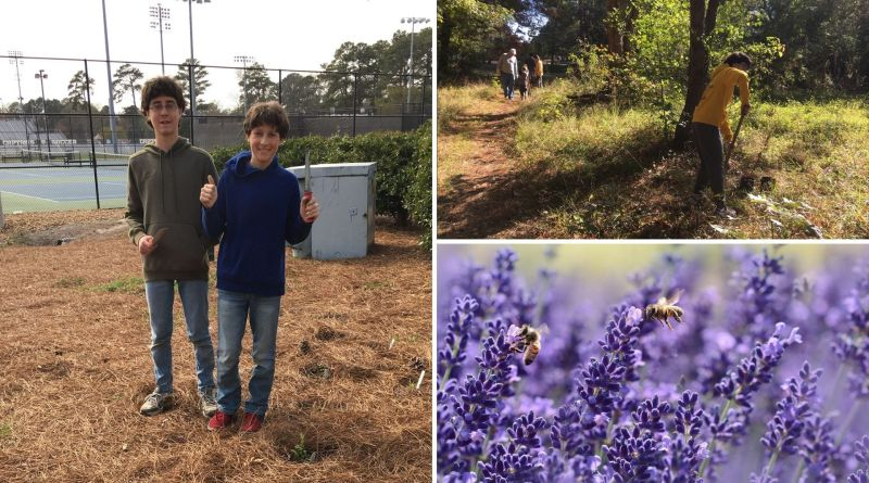 , Dos adolescentes construyeron 20 kms de jardines para salvar a las abejas