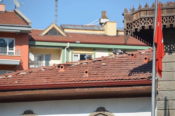 , Turquía regala a sus ciudadanos estas tejas para que las aves tengan refugios en la ciudad