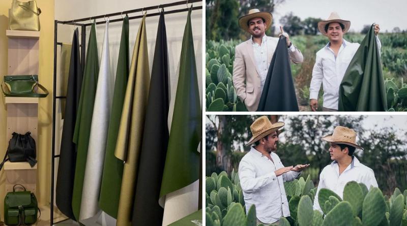 , Para reemplazar el cuero animal, Jóvenes mexicanos crean piel de nopal