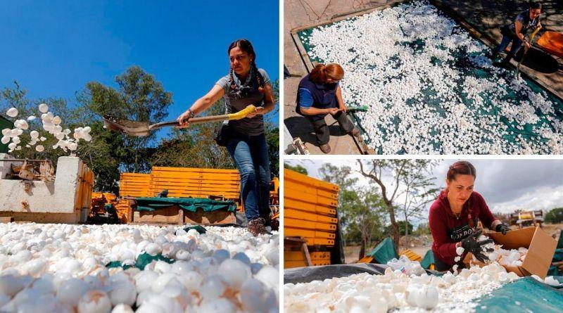 , En México descontaminan exitosamente rios de metales pesados utilizando cáscaras de huevo