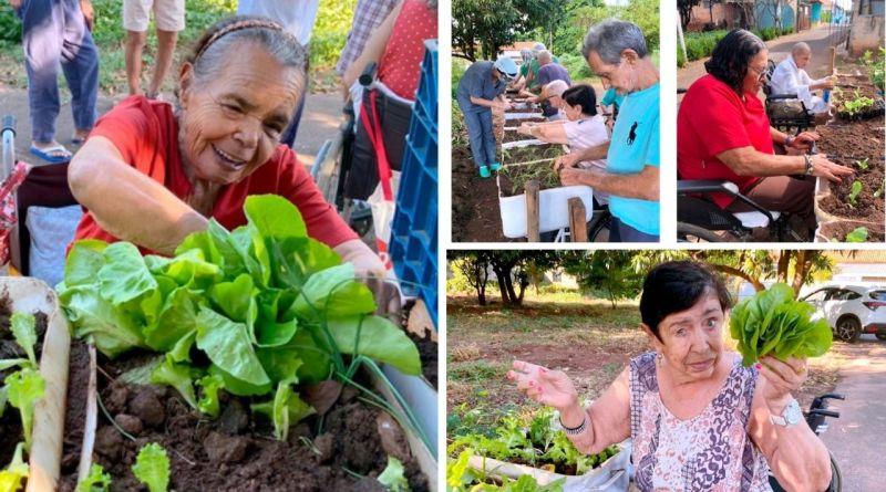, En un hogar de ancianos, el huerto se convierte en la mejor terapia durante la pandemia