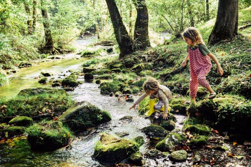 , Estudio declara que los niños al Jugar en la naturaleza mejoran su sistema Inmune