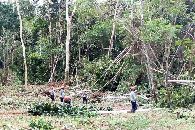 Petroperú continuará con trabajos de limpieza de lderecho de vía del Oleoducto Norperuano en Loreto.